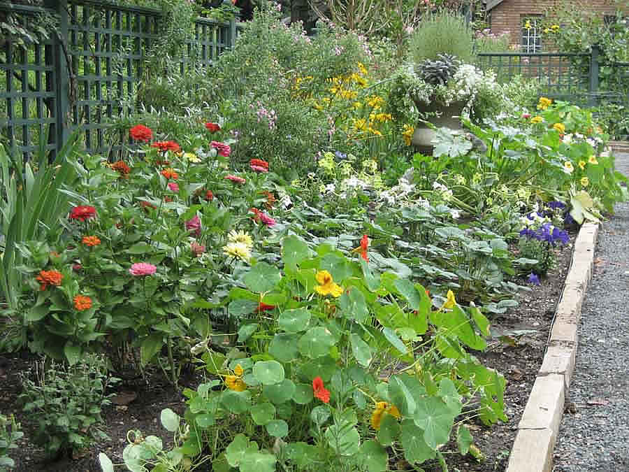 How to do Urban Permaculture Design in a visually pleasing