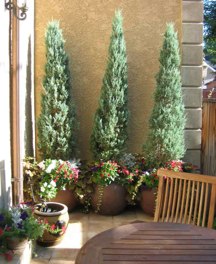 Urban tuscan style garden and landscaping design for Outdoor decorating with potted plants